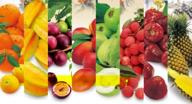 Frutas asiáticas FANYA